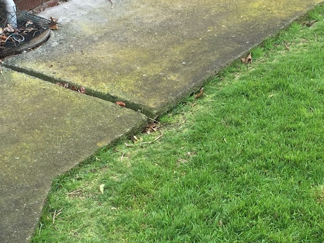 uneven garden path